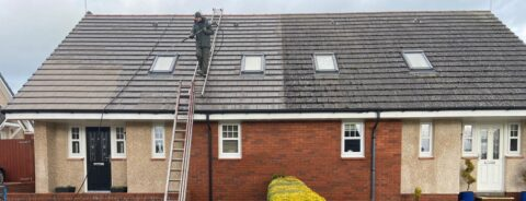 Roof Cleaning in Coalburn